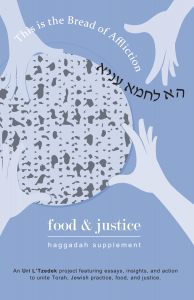 Ha Lachma Anya: food & justice haggadah supplement